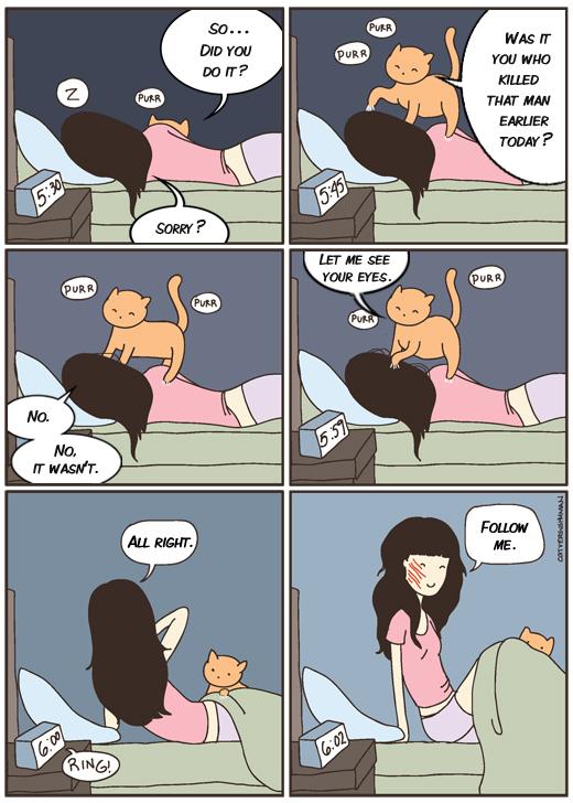 00 cat vs human
