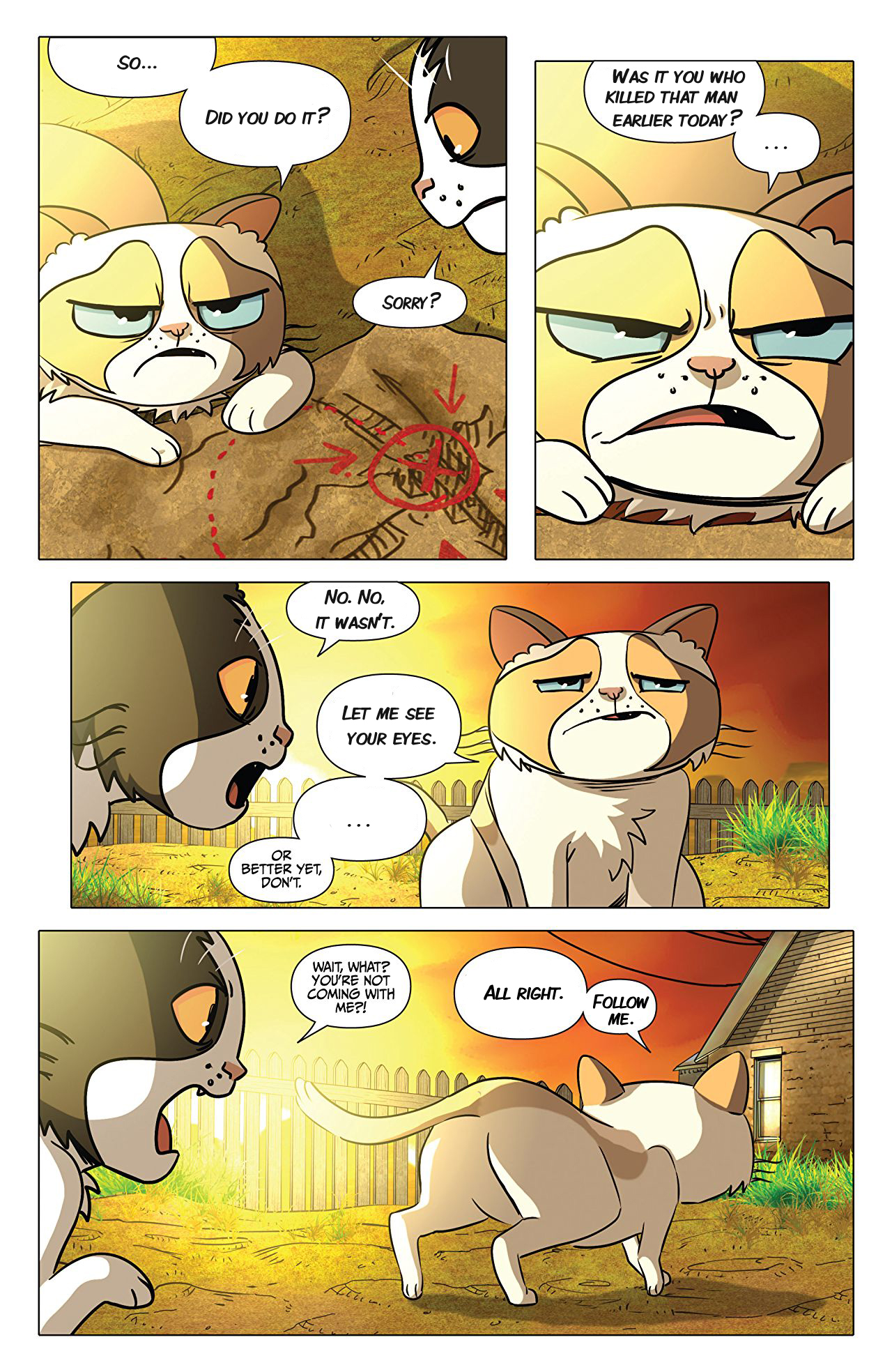 00 Grumpy Cat